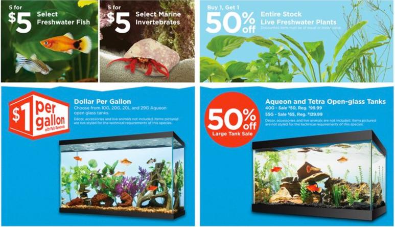 1 per gallon fish tank sale at petco