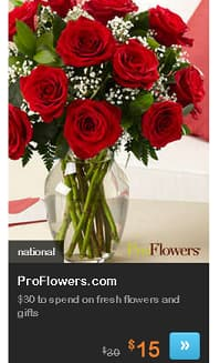 LIVING SOCIAL DEALS Today Only = $10 for $30 Pro Flowers GC, NFL Team Doormats $14ac shipped