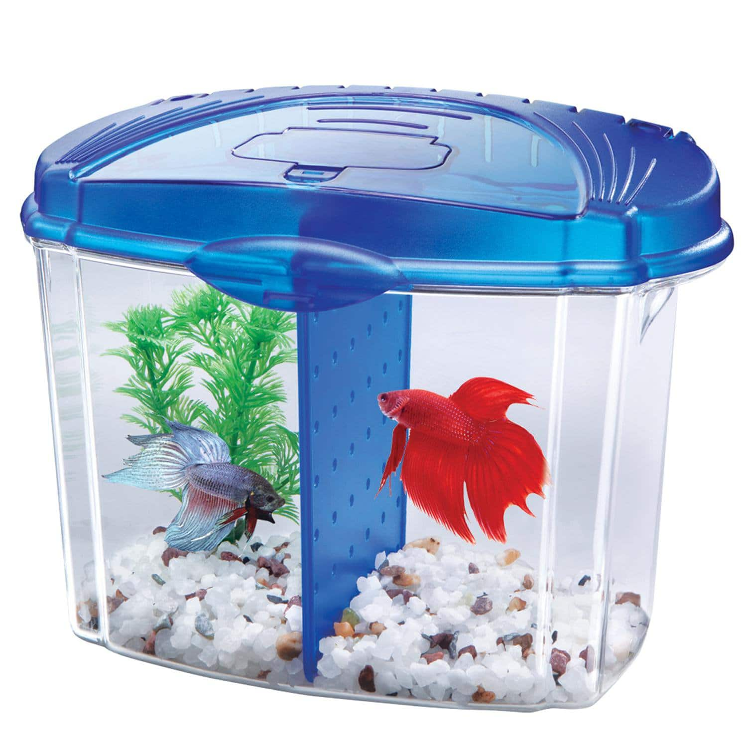 Aquarium fish tank complete system - Petco S Dollar A Gallon Aquarium Fish Tank Sale Starts Sunday