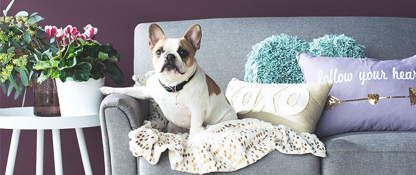 kohls home decor. living room furniture. kohls home decor