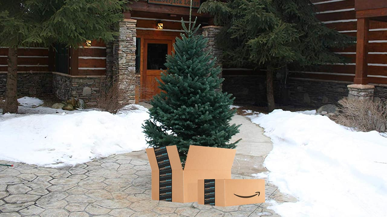 Getting a Christmas tree is, unquestionably, inconvenient — it takes a sleigh-load of time out of your already cramped holiday weekends.